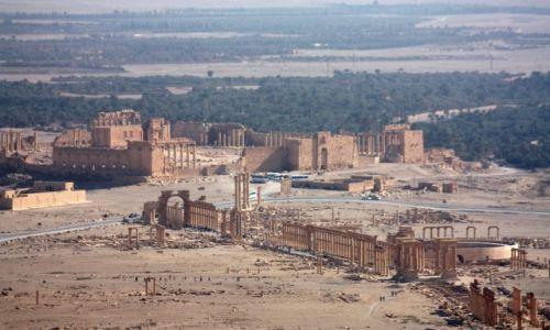 Zdjecie SYRIA / - / Palmyra / Panorama Palmyry