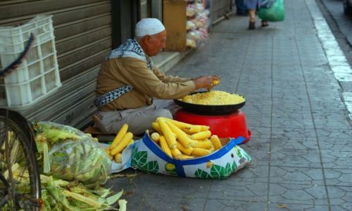 Zdjecie SYRIA / Damaszek / Dzamaszek / Sprzedawca kuku