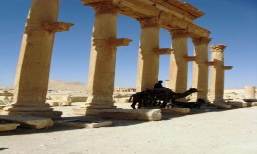 Zdjęcie SYRIA / - / Palmyra / Niedługo start