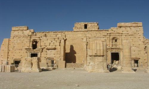 Zdjęcie SYRIA / - / Palmyra / Palmyra cd.