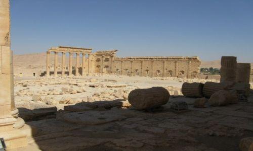 Zdjęcie SYRIA / - / Palmyra / Palmyra 4