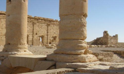 Zdjęcie SYRIA / - / Palmyra / Palmyra 6