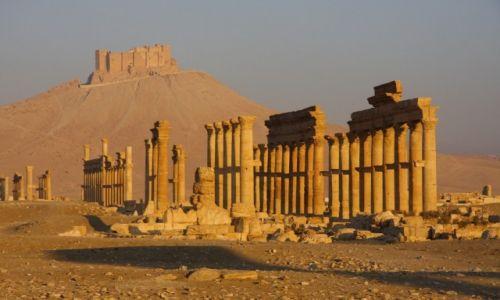 Zdjęcie SYRIA / Syria / Palmyra / Palmyra