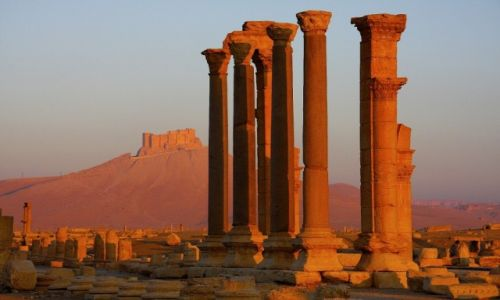 Zdjęcie SYRIA / syria / palmyra / Palmyra rano