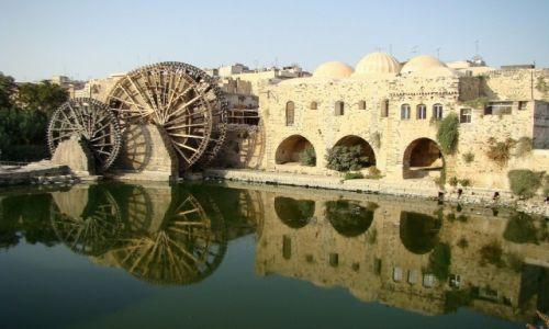 Zdjęcie SYRIA / zachodnia Syria / Hama / Norie na rzece Orontes