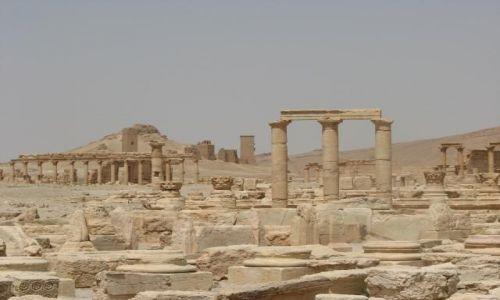 Zdjęcie SYRIA / brak / Palmyra / Widoczek