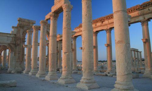 Zdjecie SYRIA / brak / Palmyra / Palmyra o poranku