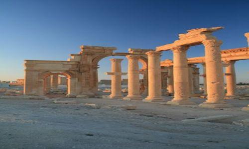 Zdjęcie SYRIA / brak / Palmyra / Palmyra o poranku
