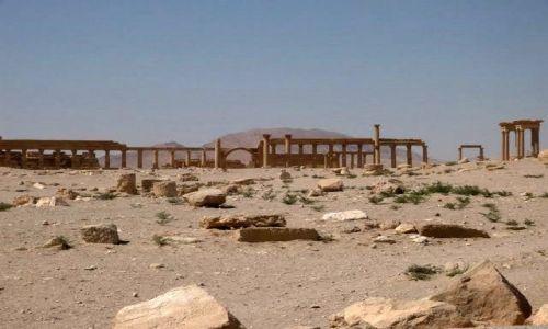Zdjecie SYRIA / brak / Palmira / Starożytne miasto