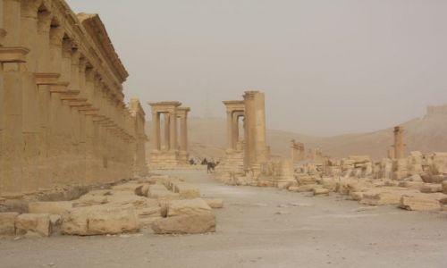 Zdjecie SYRIA / brak / Palmyra / Palmyra