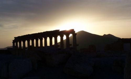 Zdjecie SYRIA / pustynia syryjska / Palmira / zachód słońca w