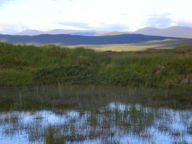 Zdjęcia: Szkocja, W drodze do Fort William, SZKOCJA