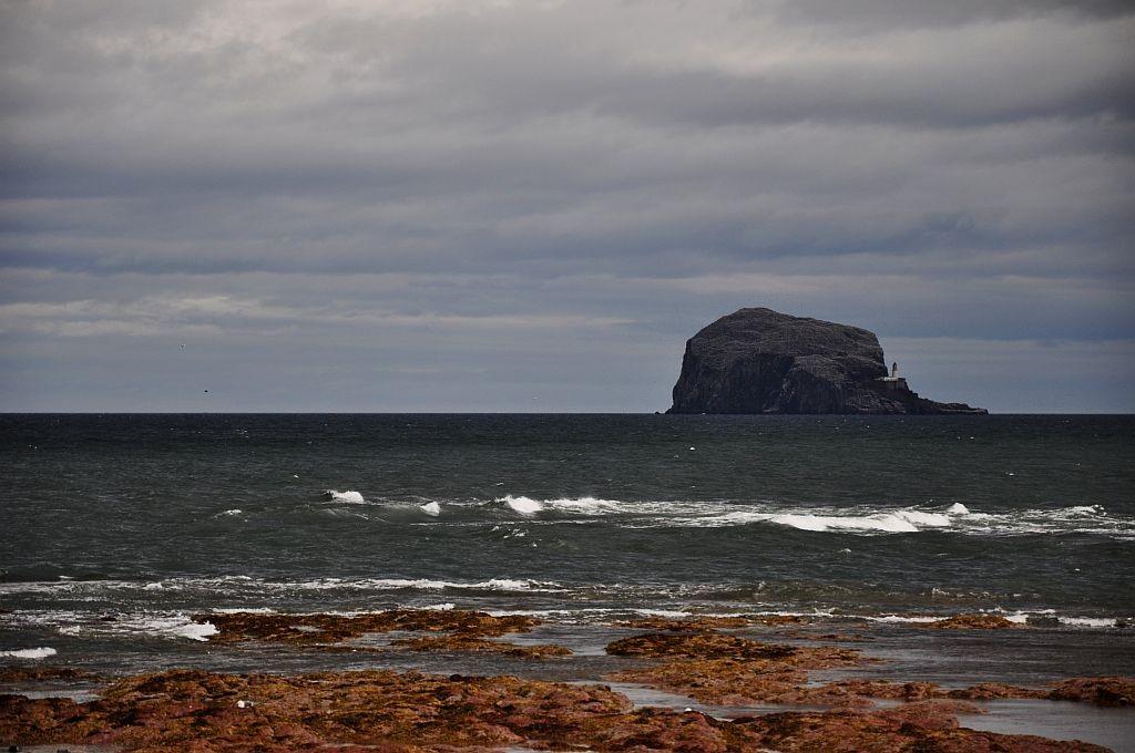 Zdjęcia: Bass Rock, wschodbia Szkocja, Bass Rock, SZKOCJA