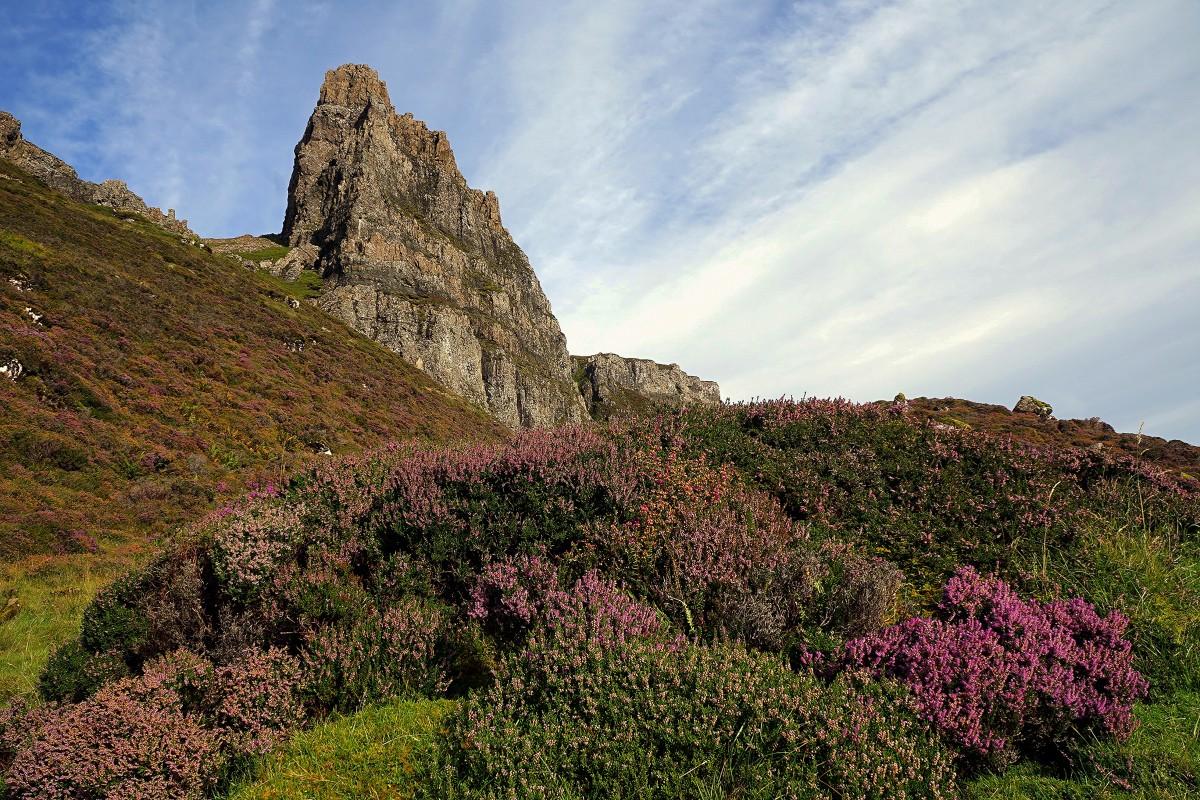 Zdjęcia: .Góry Quiraing, Wyspa Skye, Na wrzosowisku, SZKOCJA