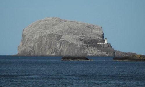 Zdjecie SZKOCJA / - / North Berwick / North Berwick - latarnia na skalistej wysepce Baas Rock
