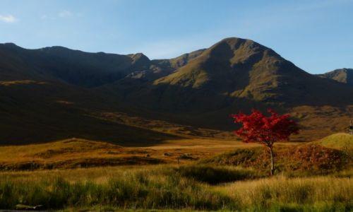 Zdjęcie SZKOCJA / Highlands / W drodze na wyspę Skye / KONKURS