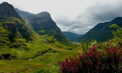 Zdjęcie SZKOCJA / Highlands / Dolina Glen Coe / Dolina pełna tajemnic