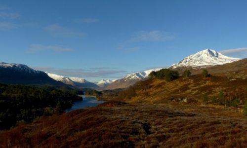 Zdjecie SZKOCJA / Highlands / Glen Affric / Poranek w  szkockich gorach