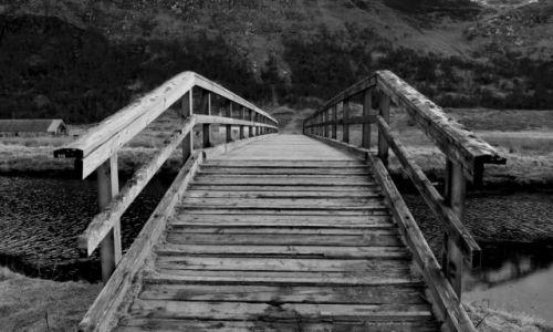 Zdjęcie SZKOCJA / Highlands / Glen Affric / Most