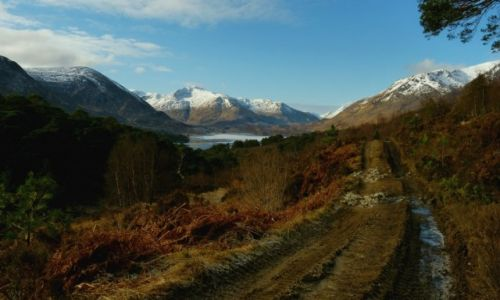 Zdjecie SZKOCJA / Highlands / Glen Affric / Moj szlak