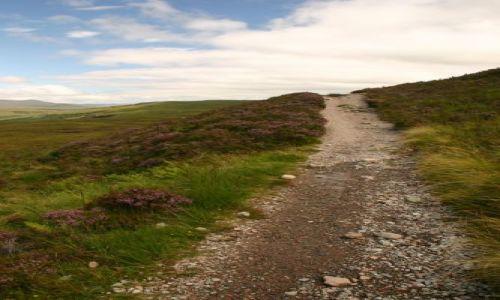 Zdjecie SZKOCJA / Glen Coe / Dawny szlak wojskowy w Glen Coe / Droga