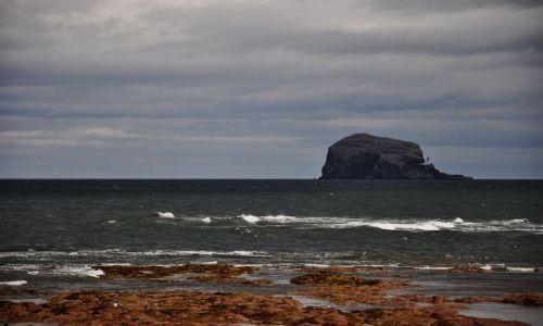 Zdjecie SZKOCJA / wschodbia Szkocja / Bass Rock / Bass Rock