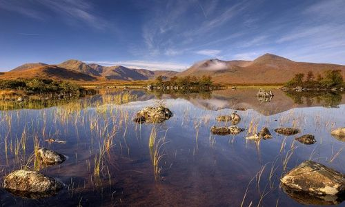Zdjecie SZKOCJA / Rannoch Moor / Lochain na h'Achlaise / Aquatic world