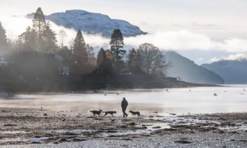 Zdjecie SZKOCJA / Trosschar / Longhead / Loch Goil