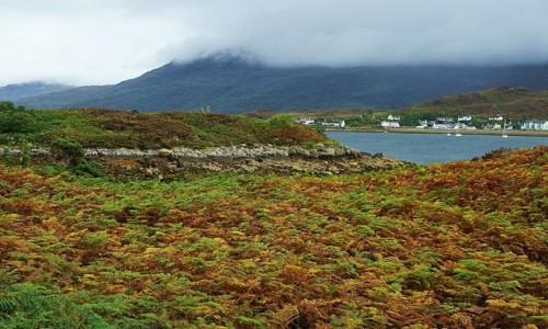 Zdjecie SZKOCJA / Wyspa Skye / Kyle of Lochalsh   / Spojrzenie na Kyleakin przez pole paproci
