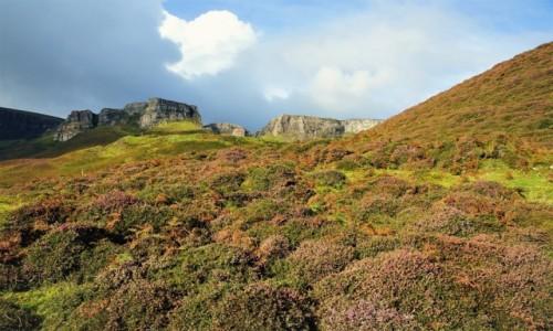 Zdjecie SZKOCJA / Wyspa Skye / Góry Quiraing  / Przez wrzosowisko