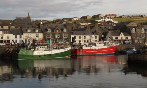 Zdjecie SZKOCJA / Północna Szkocja / Macduff / Porcik  rybacki w Macduff