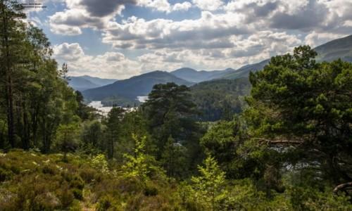 Zdjecie SZKOCJA / highlands / glen affric / Wrota Raju