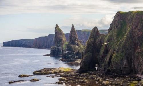 Zdjecie SZKOCJA / highlands / duncansby head / na krańcu świata