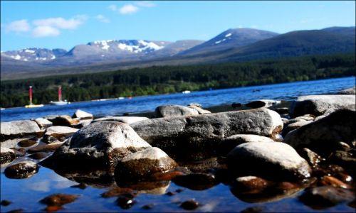 Zdjecie SZKOCJA / brak / Glenmoore Wildlife Park / Glenmoore Wildlife Park Lake