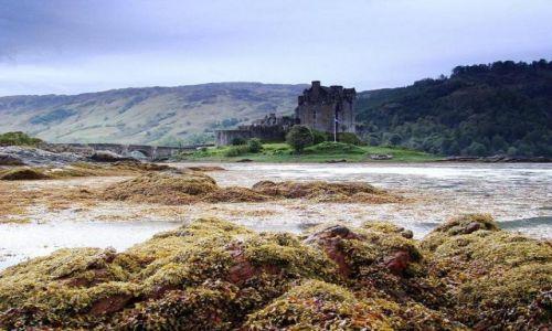 Zdjęcie SZKOCJA / Highland / Loch Duich  (  Dornie  ) / Eilean  Donan  Castle