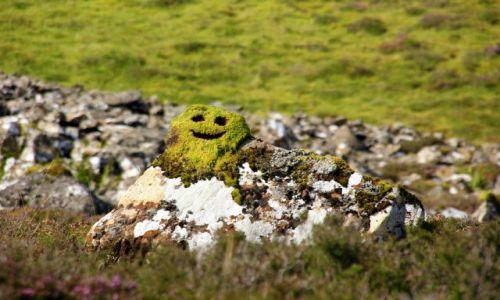 Zdjecie SZKOCJA / Wyspa Skye / Trotternish / Duchy Gór :)