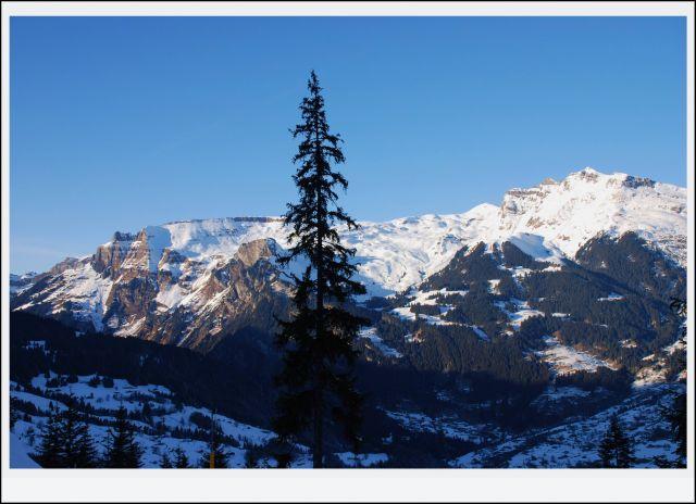 Zdjęcia: alpy, wallis, widoczek alpejski, SZWAJCARIA