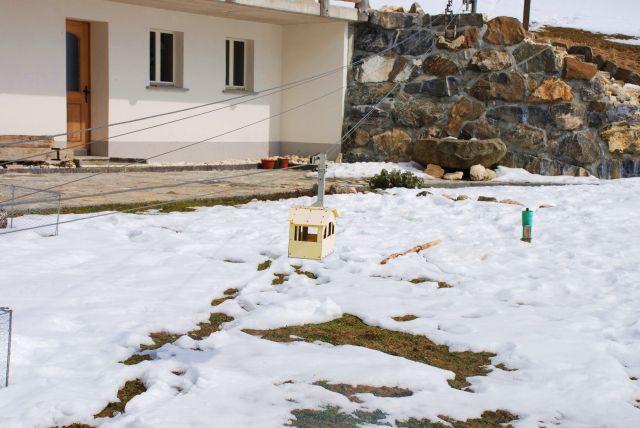 Zdjęcia: adelboden, kanton bern, karmnik dla ptaszköw, SZWAJCARIA