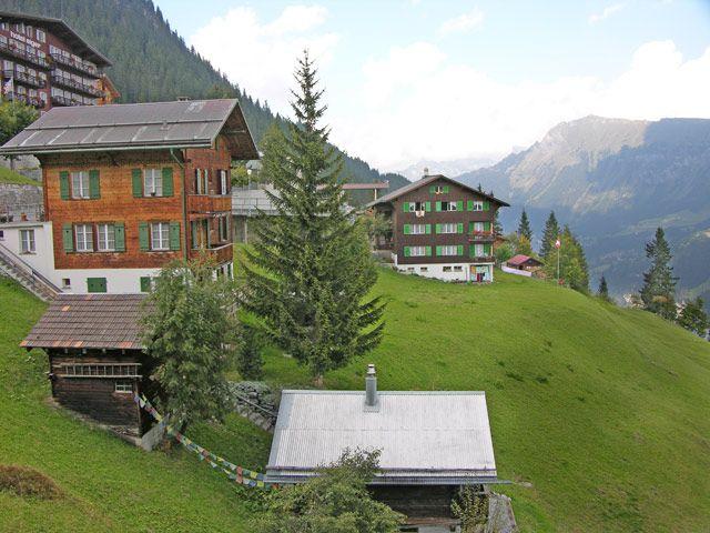 Zdjęcia: Interlaken, Na zboczu, SZWAJCARIA