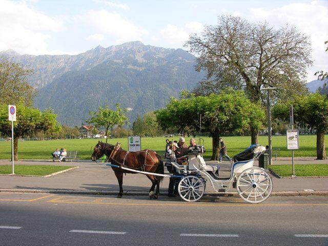 Zdjęcia: Interlaken, Bryczka, SZWAJCARIA