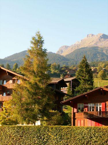 Zdjęcia: Grindelwald, Alpejska architektura, SZWAJCARIA