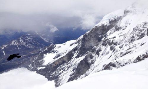SZWAJCARIA / Alpy Berneńskie / Jungfrau / Widok z Jungfrau