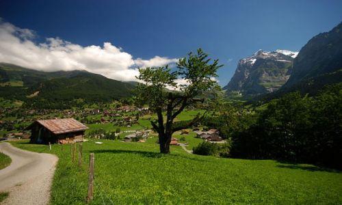 SZWAJCARIA / - / Alpy Berneńskie - widok na Grindenwald / Alpy Berneńskie