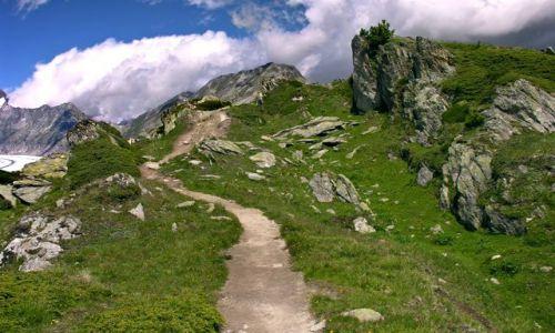 SZWAJCARIA / Valais / Moosfluch - okolice lodowca Aletsch / Nad lodowcem
