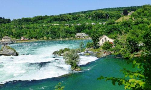 Zdjecie SZWAJCARIA / kanton Szafuza / okolice Schaffhausen / Rhine Falls
