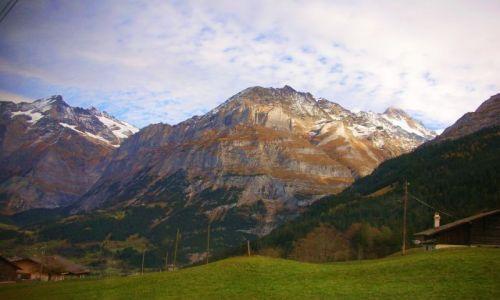 Zdjęcie SZWAJCARIA / Alpy szwajc. / griendelwald / widoczek