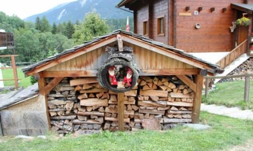 Zdjęcie SZWAJCARIA / - / Szwajcaria / Przy domku