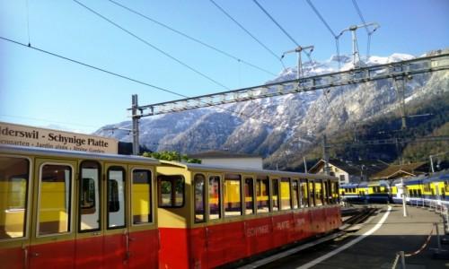 Zdjecie SZWAJCARIA / Grinderwald / Grinderwald / Kolejka na Jungfrau