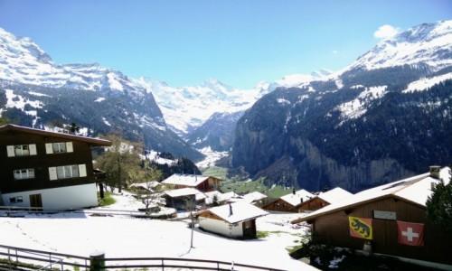Zdjecie SZWAJCARIA / Grindelwald / Grindelwald / Wioska w Alpach