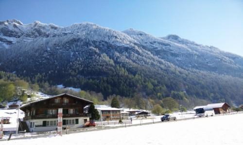 Zdjecie SZWAJCARIA / Grindelwald / Grindelwald / Wiosna w Alpach